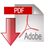 Adobe download Icon
